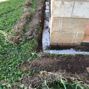 Termite Management Yeppoon