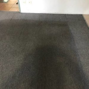 Stained Carpet & Upholstery Cleaning