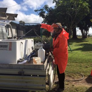 Pest & Insect Management Yeppoon